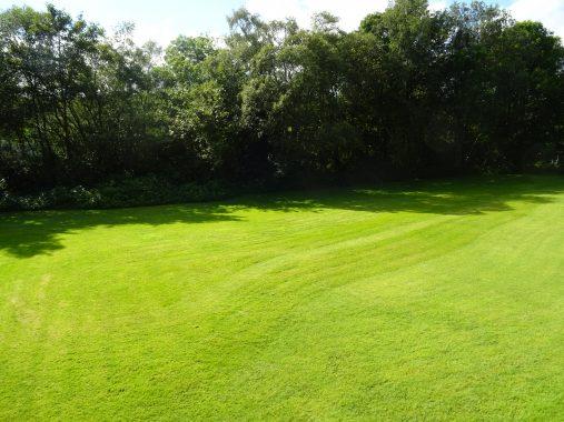 Hillcourt, Hydro Avenue, Garden 1